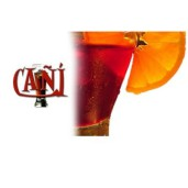 Tienda online vermouth Cañi